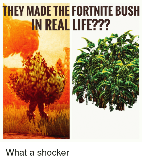 They Made The Fortnite Bush In Real Life Life Meme On