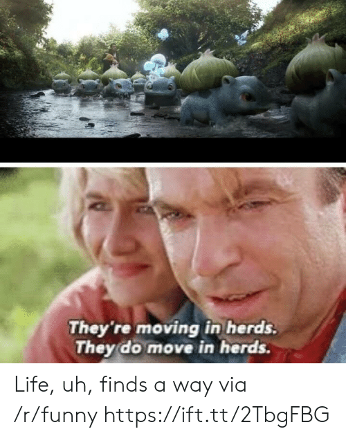 moving in: They 're moving in herds.  They do move in herds. Life, uh, finds a way via /r/funny https://ift.tt/2TbgFBG
