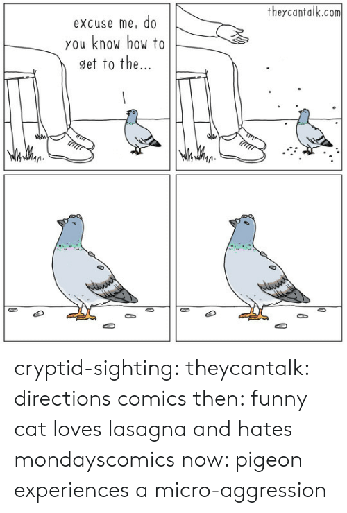 Aggression: theycantalk.com  excuse me, do  you know how to  9et to the  M. cryptid-sighting:  theycantalk: directions comics then: funny cat loves lasagna and hates mondayscomics now: pigeon experiences a micro-aggression