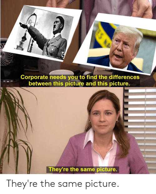 Donald Trump: They're the same picture.
