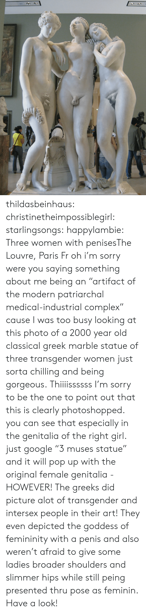 """Statue Of: thildasbeinhaus:  christinetheimpossiblegirl:  starlingsongs:  happylambie:  Three women with penisesThe Louvre, Paris Fr  oh i'm sorry were you saying something about me being an """"artifact of the modern patriarchal medical-industrial complex"""" cause I was too busy looking at this photo of a 2000 year old classical greek marble statue of three transgender women just sorta chilling and being gorgeous.  Thiiiissssss  I'm sorry to be the one to point out that this is clearly photoshopped. you can see that especially in the genitalia of the right girl. just google""""3 muses statue"""" and it will pop up with the original female genitalia - HOWEVER! The greeks did picture alot of transgender and intersex people in their art! They even depicted the goddess of femininity with a penis and also weren't afraid to give some ladies broader shoulders and slimmer hips while still peing presented thru pose as feminin. Have a look!"""