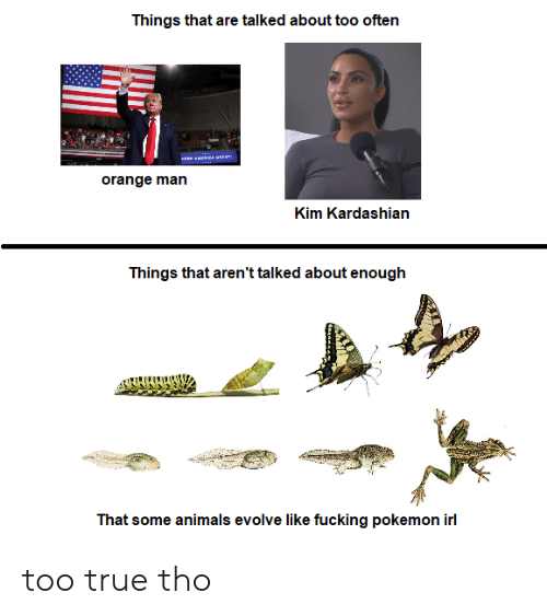 kim: Things that are talked about too often  orange man  Kim Kardashian  Things that aren't talked about enough  That some animals evolve like fucking pokemon irl too true tho