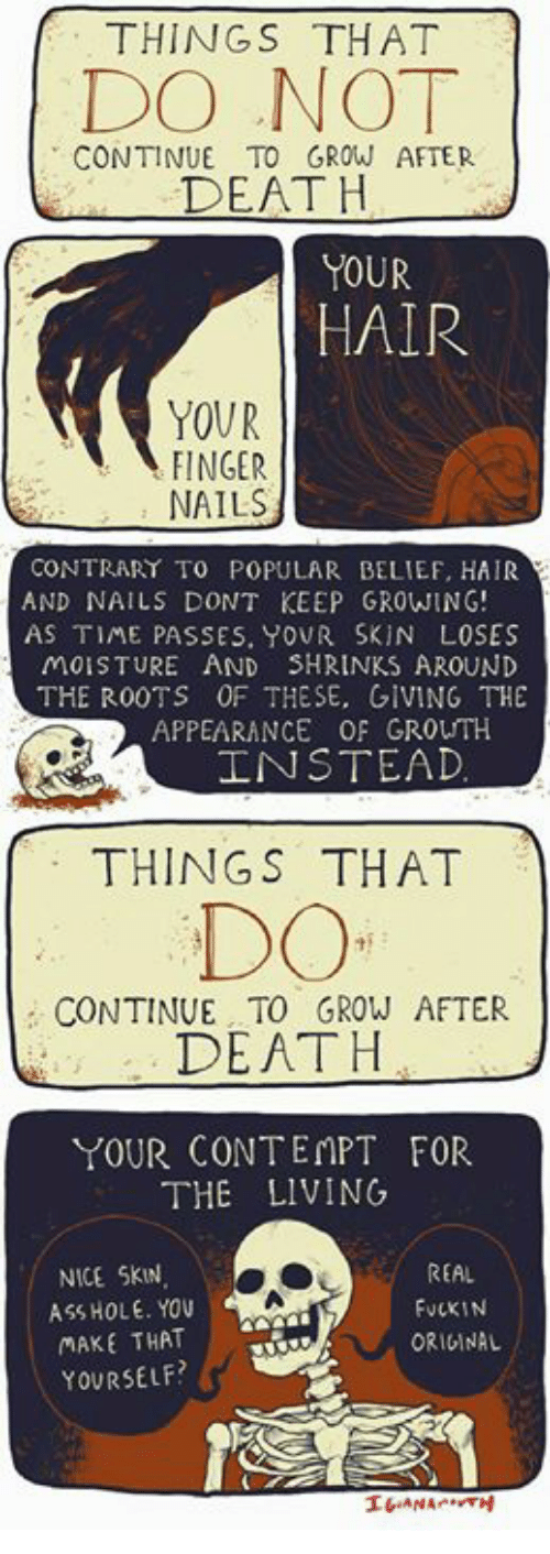 Contemption: THINGS THAT  DO NO  CONTINUE TO GROW AFTER  DEATH  YOUR  HAIR  YOUR  FINGER  NAILS  CONTRARY TO POPULAR BELIEF, HAIR  AND NAILS DONT KEEP GROWING!  AS TIME PASSES, YOUR SKIN LOSES  MOISTURE AND SHRINKS AROUND  THE R00TS OF THESE, GIVING THE  APPEARANCE OF GROUTH  INSTEAD  THINGS THAT  DO  CONTINUE TO GROW AFTER  DEATH  YOUR CONTEMPT FOR  THE LIVING  NICE SKN  ASS HOLE. YOu  MAKE THAT  YOURSELF?  REAL  FuCKIN  ORIGINAL