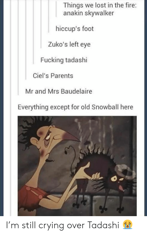 Anakin Skywalker, Crying, and Fire: Things we lost in the fire:  anakin skywalker  hiccup's foot  Zuko's left eye  Fucking tadashi  Ciel's Parents  Mr and Mrs Baudelaire  Everything except for old Snowball here I'm still crying over Tadashi 😭