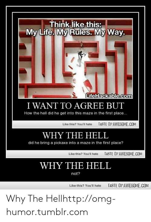 Lifehackable Com: Think like this:  My Life. My Rules. My Way.  Eosil  LifeHackable.com  I WANT TO AGREE BUT  How the hell did he get into this maze in the first place.  TASTE OFAWESOME.COM  Like this? Youll hate  WHY THE HELL  did he bring a pickaxe into a maze in the first place?  TASTE OF AWESOME.COM  Like this? You'll hate  WHY THE HELL  not?  TASTE OF AWESOME.COM  Like this? You'll hate Why The Hellhttp://omg-humor.tumblr.com