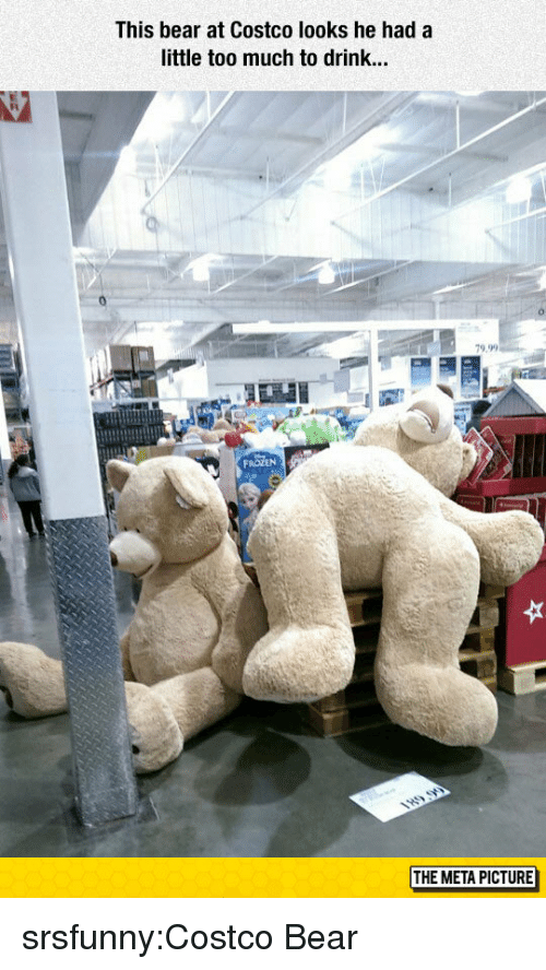 Costco: This bear at Costco looks he hada  little too much to drink...  79.9  THE META PICTURE srsfunny:Costco Bear