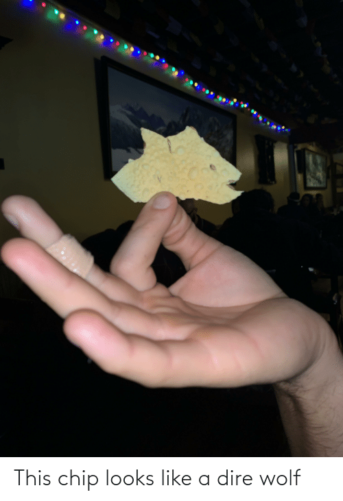 dire wolf: This chip looks like a dire wolf