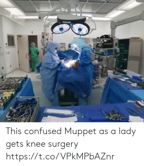 Confused, Faces-In-Things, and Muppet: This confused Muppet as a lady gets knee surgery https://t.co/VPkMPbAZnr