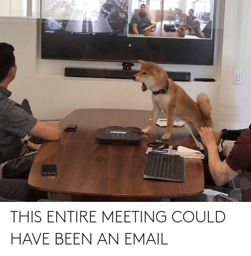 Email: THIS ENTIRE MEETING COULD HAVE BEEN AN EMAIL
