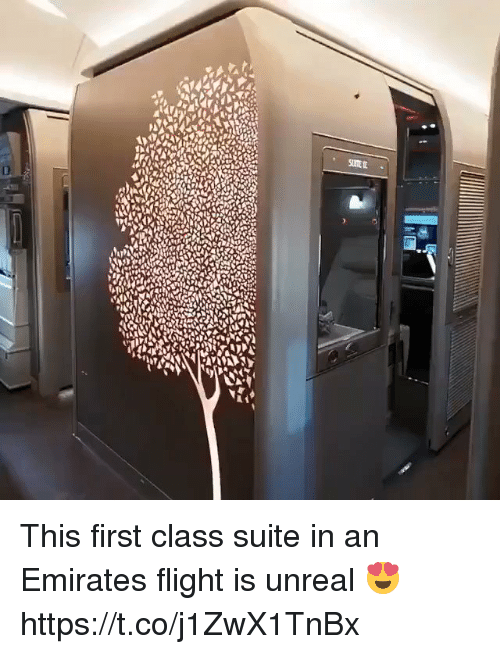 Emirates, Flight, and Girl Memes: This first class suite in an Emirates flight is unreal 😍 https://t.co/j1ZwX1TnBx