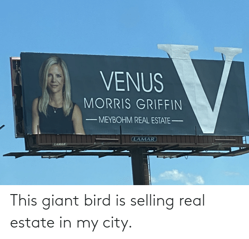Giant: This giant bird is selling real estate in my city.