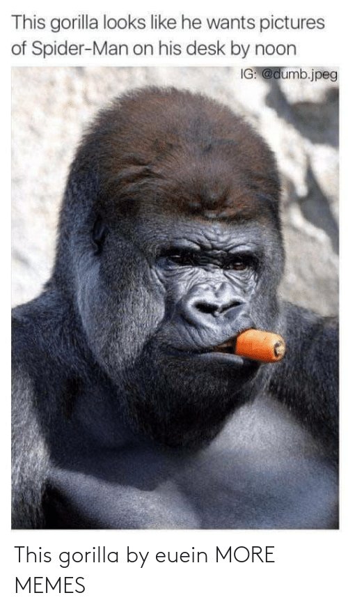 gorilla: This gorilla by euein MORE MEMES