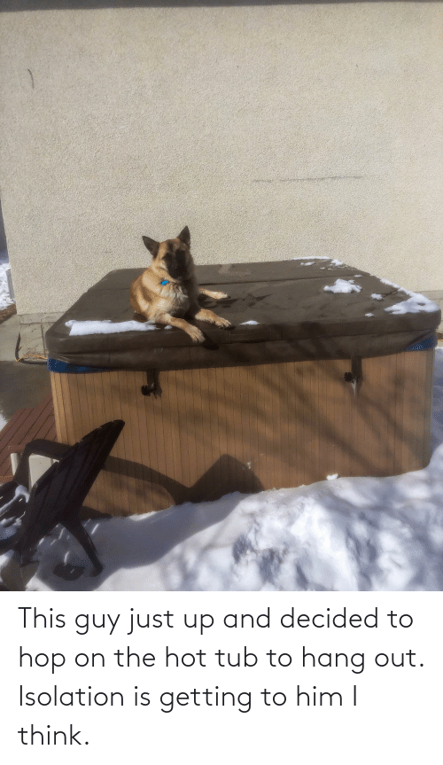 tub: This guy just up and decided to hop on the hot tub to hang out. Isolation is getting to him I think.