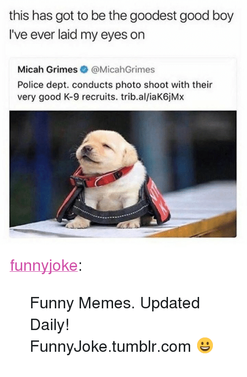 "Funny, Memes, and Police: this has got to be the goodest good boy  I've ever laid my eyes on  Micah Grimes @MicahGrimes  Police dept. conducts photo shoot with their  very good K-9 recruits. trib.al/iaK6jMx <p><a href=""http://funny.in/post/170983628878/funny-memes-updated-daily-funnyjoketumblrcom"" class=""tumblr_blog"">funnyjoke</a>:</p>  <blockquote><p>Funny Memes. Updated Daily! ⇢ FunnyJoke.tumblr.com 😀</p></blockquote>"