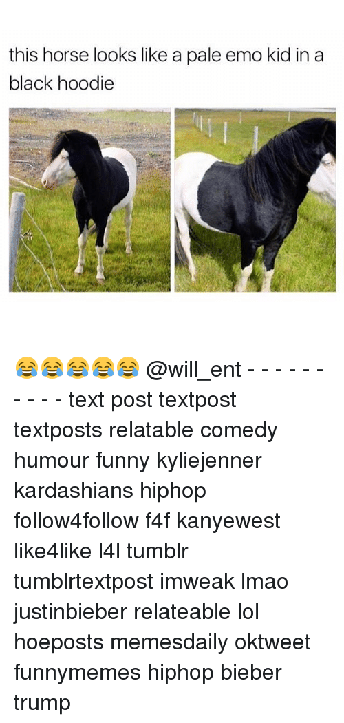 emo kids: this horse looks like a pale emo kid in a  black hoodie 😂😂😂😂😂 @will_ent - - - - - - - - - - text post textpost textposts relatable comedy humour funny kyliejenner kardashians hiphop follow4follow f4f kanyewest like4like l4l tumblr tumblrtextpost imweak lmao justinbieber relateable lol hoeposts memesdaily oktweet funnymemes hiphop bieber trump
