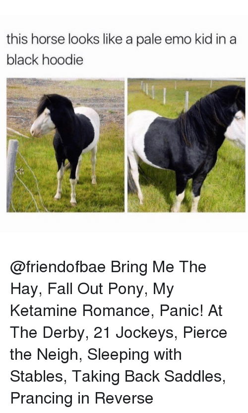emo kids: this horse looks like a pale emo kid in a  black hoodie @friendofbae Bring Me The Hay, Fall Out Pony, My Ketamine Romance, Panic! At The Derby, 21 Jockeys, Pierce the Neigh, Sleeping with Stables, Taking Back Saddles, Prancing in Reverse