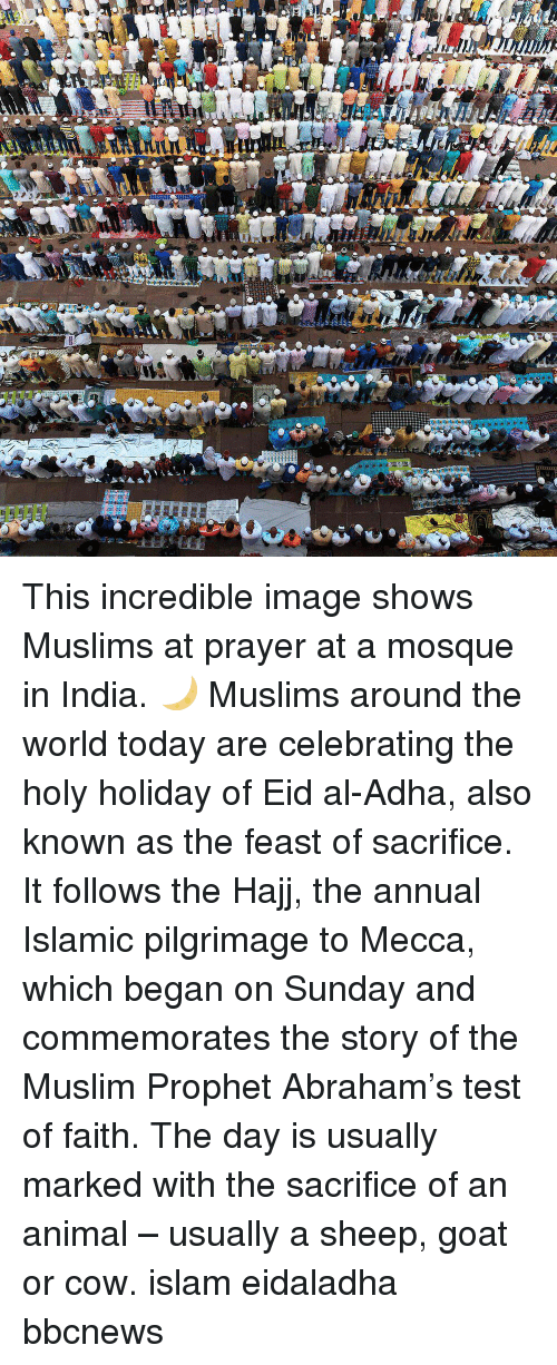 Memes, Muslim, and Goat: This incredible image shows Muslims at prayer at a mosque in India. 🌙 Muslims around the world today are celebrating the holy holiday of Eid al-Adha, also known as the feast of sacrifice. It follows the Hajj, the annual Islamic pilgrimage to Mecca, which began on Sunday and commemorates the story of the Muslim Prophet Abraham's test of faith. The day is usually marked with the sacrifice of an animal – usually a sheep, goat or cow. islam eidaladha bbcnews