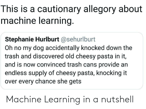 And Is: This is a cautionary allegory about  machine learning.  Stephanie Hurlburt @sehurlburt  Oh no my dog accidentally knocked down the  trash and discovered old cheesy pasta in it,  and is now convinced trash cans provide an  endless supply of cheesy pasta, knocking it  over every chance she gets Machine Learning in a nutshell