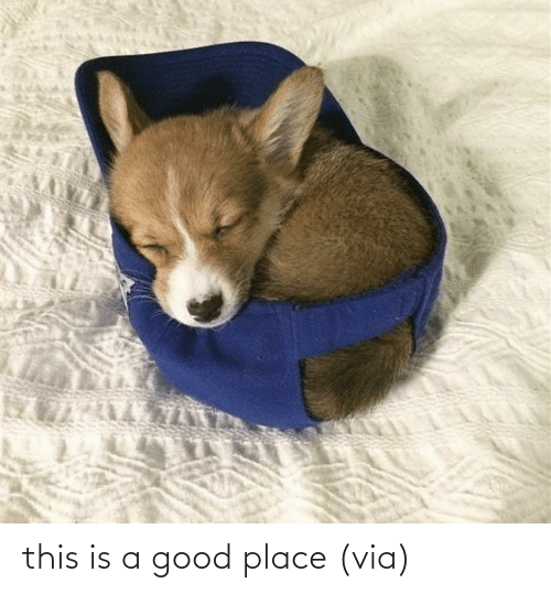 place: this is a good place(via)