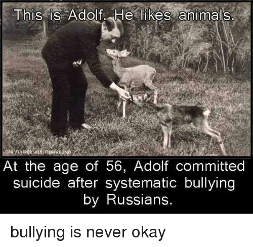Animals, Okay, and Suicide: This is Adolf He likes animals  At the age of 56, Adolf committed  suicide after systematic bullying  by Russians. <p>bullying is never okay</p>