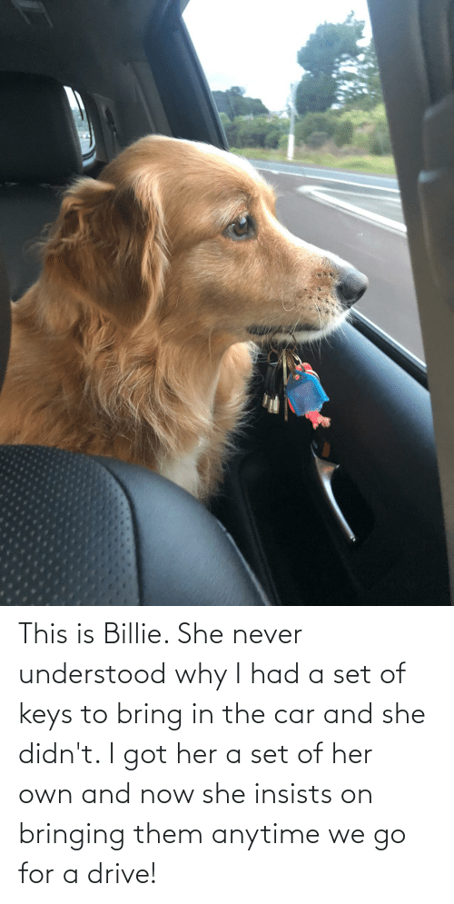 anytime: This is Billie. She never understood why I had a set of keys to bring in the car and she didn't. I got her a set of her own and now she insists on bringing them anytime we go for a drive!