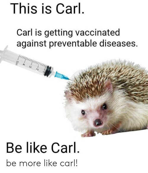Be Like, Diseases, and More: This is Carl  Carl is getting vaccinated  against preventable diseases.  Be like Carl be more like carl!