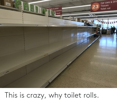 This Is Crazy: This is crazy, why toilet rolls.