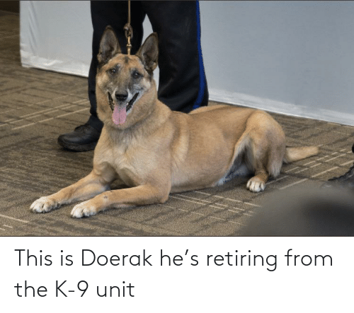 k-9: This is Doerak he's retiring from the K-9 unit