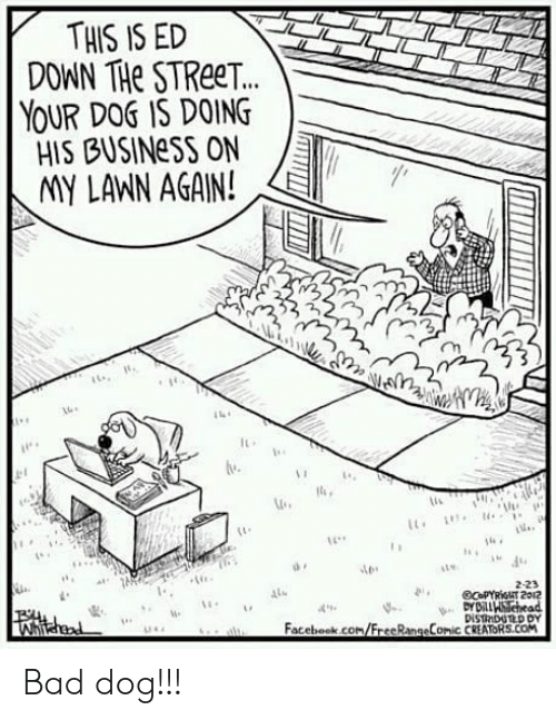 imy: THIS IS ED  DOWN THe STReeT.  YOUR DOS IS DOING  HIS BUSINeSS ON  IMY LANN AGAIN!  2  lu  2-23  4  Facebook.com/FrecRangeComic CREATORS.COM Bad dog!!!