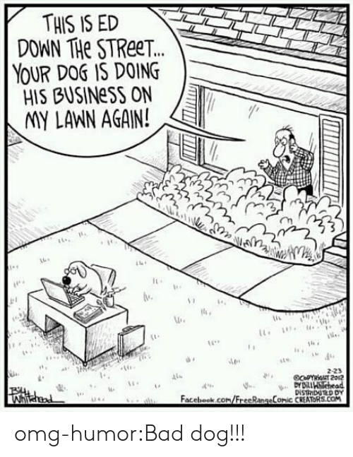 imy: THIS IS ED  DOWN THe STReeT.  YOUR DOS IS DOING  HIS BUSINeSS ON  IMY LANN AGAIN!  2  lu  2-23  4  Facebook.com/FrecRangeComic CREATORS.COM omg-humor:Bad dog!!!