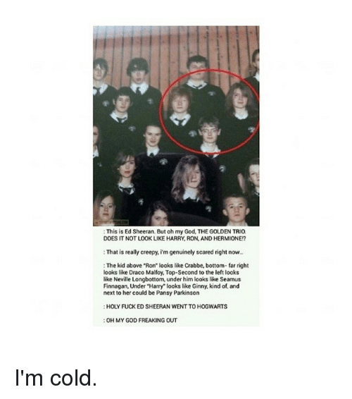 "Neville Longbottomed: This is Ed Sheeran. But oh my God, THE GOLDEN TRIO.  DOES IT NOT LOOK LIKE HARRY, RON, AND HERMIONE?  That is really creepy, im genuinely scared right now...  The kid above ""Ron' looks like Crabbe, bottom-far right  looks like Draco Malfoy, Top-Second to the left looks  like Neville Longbottom, under him looks like Seamus  Finnagan, Under Harry looks like Ginny, kind of, and  next to her could be Pansy Parkinson  HOLY FUCK ED SHEERAN WENTTO HOGWARTS  :OH MY GOD FREAKING OUT I'm cold."