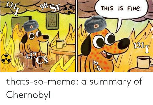 Meme, Target, and Tumblr: THIS IS FINe  1374  en thats-so-meme:  a summary of Chernobyl