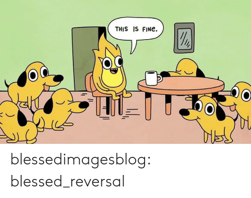 Blessed, Tumblr, and Blog: THIS IS FINE. blessedimagesblog:  blessed_reversal