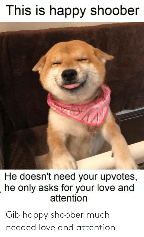 attention: This is happy shoober  He doesn't need your upvotes,  he only asks for your love and  attention Gib happy shoober much needed love and attention