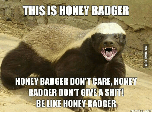 Honey Badger Meme