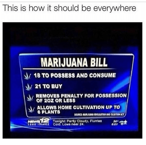 Memes, Marijuana, and Cold: This is how it should be everywhere  MARIJUANA BILL  18 TO POSSESS AND CONSUME  21 TO BUY  REMOVES PENALTY FOR POSSESSION  OF 20Z OR LESS  ALLOWSHOME CULTIVATION UP TO  PLANTS  Tonight: Parly Cloudy. Flurries  o Cold. Lows near 24