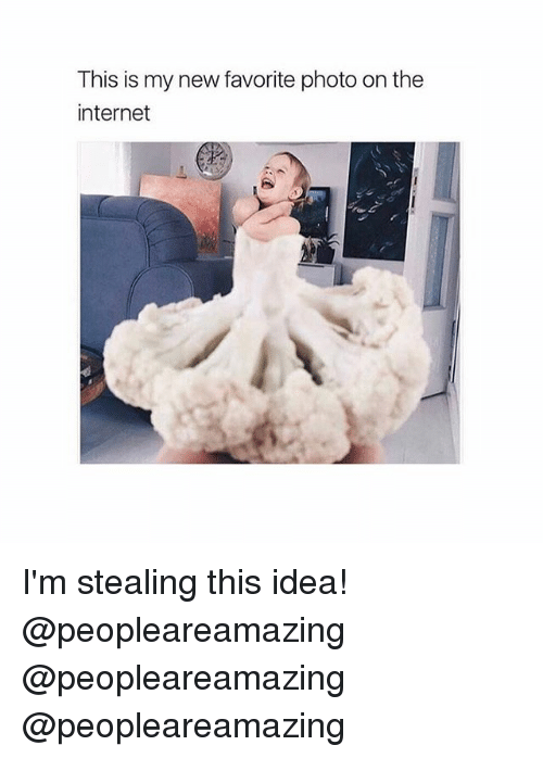 Internet, Memes, and 🤖: This is my new favorite photo on the  internet I'm stealing this idea! @peopleareamazing @peopleareamazing @peopleareamazing