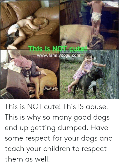 getting dumped: This is NOT cute!  .familydogu.com This is NOT cute! This IS abuse! This is why so many good dogs end up getting dumped. Have some respect for your dogs and teach your children to respect them as well!