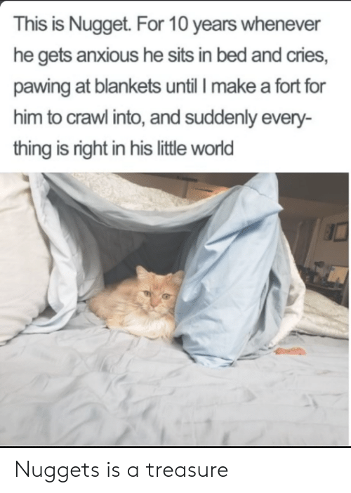 crawl: This is Nugget. For 10 years whenever  he gets anxious he sits in bed and cries,  pawing at blankets until I make a fort for  him to crawl into, and suddenly every-  thing is right in his little world Nuggets is a treasure