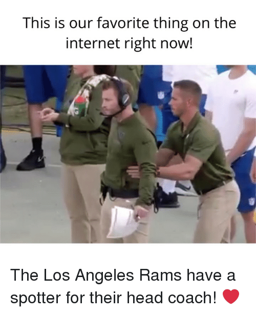 Head, Internet, and Los Angeles Rams: This is our favorite thing on the  internet right now! The Los Angeles Rams have a spotter for their head coach! ❤️