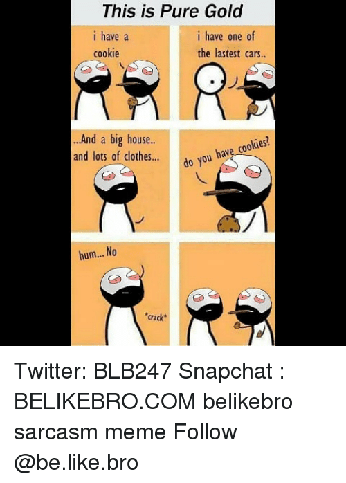 Be Like, Cars, and Clothes: This is Pure Gold  i have a  cookie  i have one of  the lastest cars..  And a big house  and lots of clothes...do You  do you have cookies?  hum... No  crack Twitter: BLB247 Snapchat : BELIKEBRO.COM belikebro sarcasm meme Follow @be.like.bro