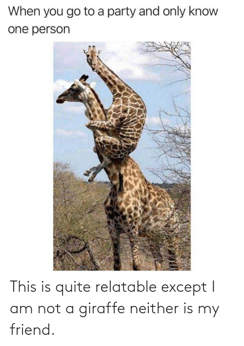 Quite: This is quite relatable except I am not a giraffe neither is my friend.