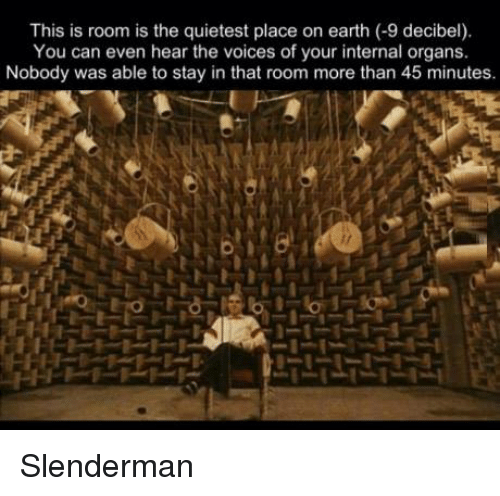 decibels: This is room is the quietest place on earth  (-9 decibel).  You can even hear the voices of your internal organs.  Nobody was able to stay in that room more than 45 minutes. Slenderman