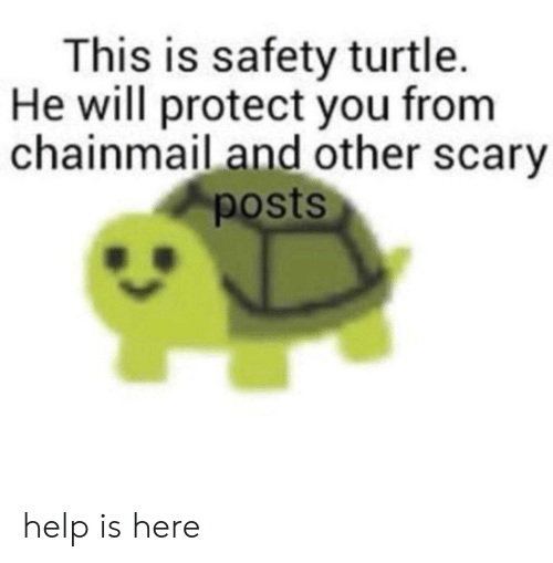 He Will: This is safety turtle.  He will protect you from  chainmail and other scary  posts help is here