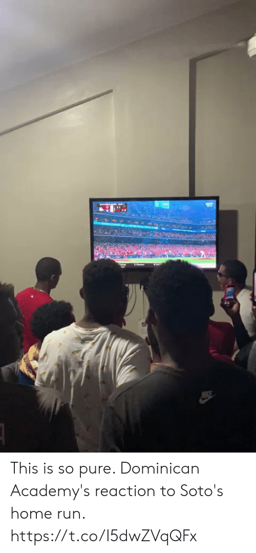 Dominican: This is so pure. Dominican Academy's reaction to Soto's home run.  https://t.co/I5dwZVqQFx