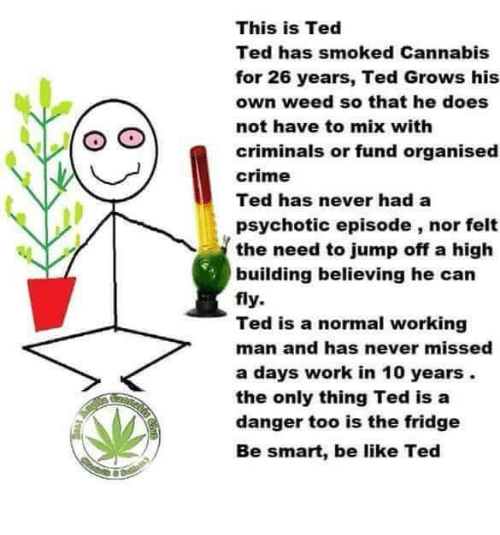 Jump Off: This is Ted  Ted has smoked Cannabis  for 26 years, Ted Grows his  own weed so that he does  not have to mix with  criminals or fund organised  crime  Ted has never had a  psychotic episode, nor felt  the need to jump off a high  building believing he can  fly.  Ted is a normal working  man and has never missed  a days work in 10 years.  the only thing Ted is a  danger too is the fridge  Be smart, be like Ted