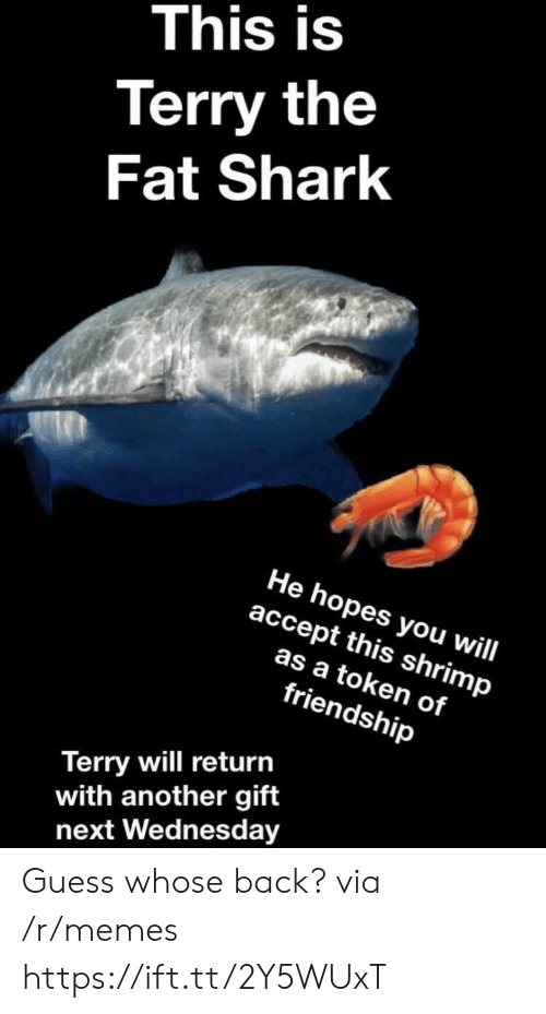 Memes, Shark, and Guess: This is  Terry the  Fat Shark  He hopes you will  accept this shrimp  as a token of  friendship  Terry will return  with another gift  next Wednesday Guess whose back? via /r/memes https://ift.tt/2Y5WUxT