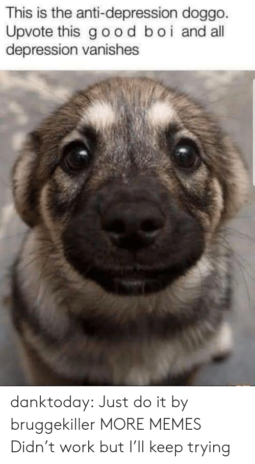 Dank, Just Do It, and Memes: This is the anti-depression doggo  Upvote this good boi and all  depression vanishes danktoday:  Just do it by bruggekiller MORE MEMES  Didn't work but I'll keep trying