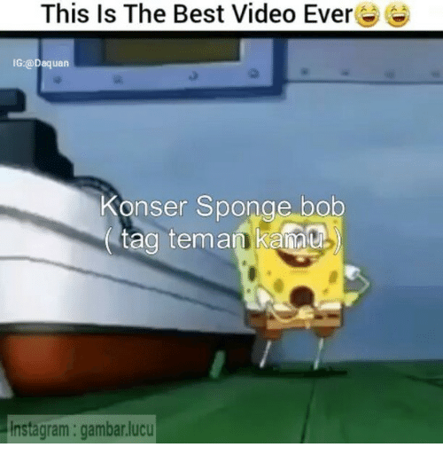 ags: This Is The Best Video Ever  IG:@Daquan  Konser Sponge bob  ag teman Kanu  instagram: gambar.lucu