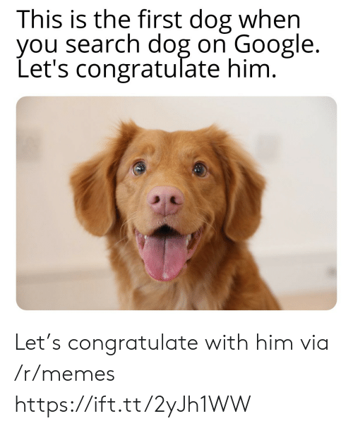 Dog On: This is the first dog when  you search dog on Google.  Let's congratulate him. Let's congratulate with him via /r/memes https://ift.tt/2yJh1WW